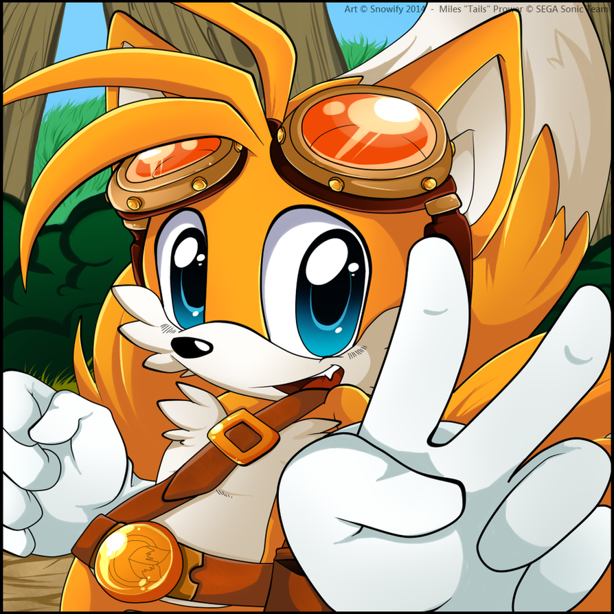 Tails the fox sonic boom