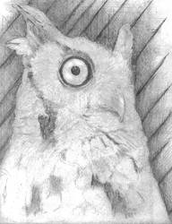 Owl Sketch by Exed-Exodus