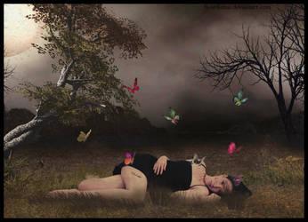 Night Butterflys by fleurdemai
