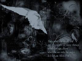 Poe Wallpaper by fleurdemai