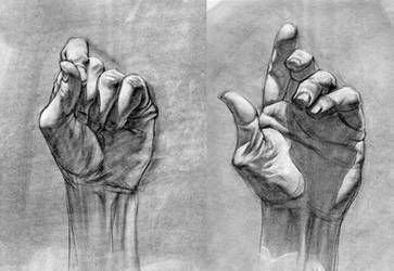 hands by bolognafingers