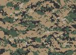 Camouflage - United States - MARPAT(Woodland)