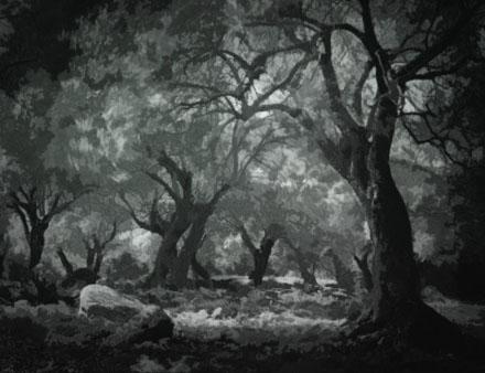 Part 1: The Dark Mansion Garden_by_arcanehalo-d7y8mtu