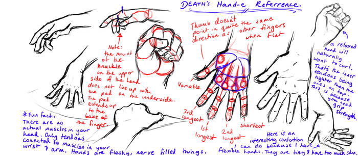 Hand-e referrence
