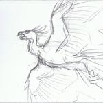Phoenix - Barrel Roll - Pencil Test 1 by Deathcomes4u