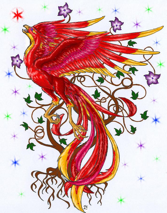 Phoenix Shirt Design WIP3 By Deathcomes4u On DeviantArt