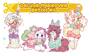 Deluxe Makeover - Batch #2