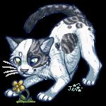 I shall get you Mr. Flower by Kiboku