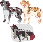 $5 Canine Adopts - CLOSED