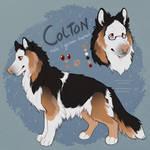Colton: SOLD