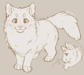 Cat Reference YCH - CLOSED