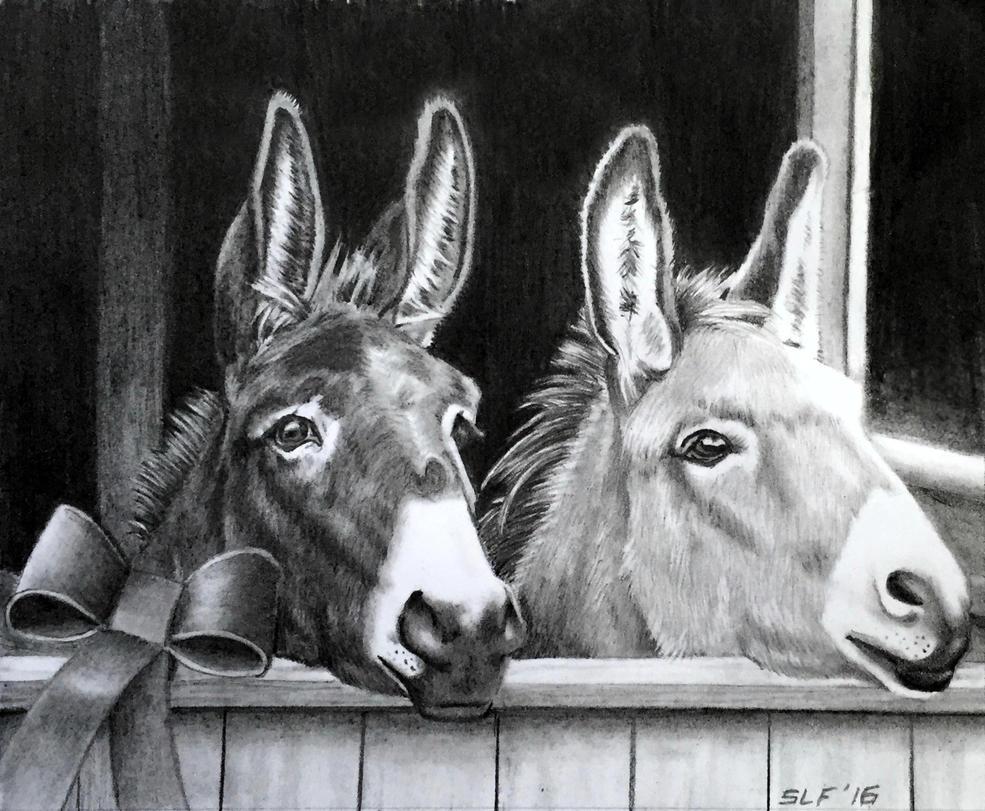 Christmas Donkeys by WildwingSuz