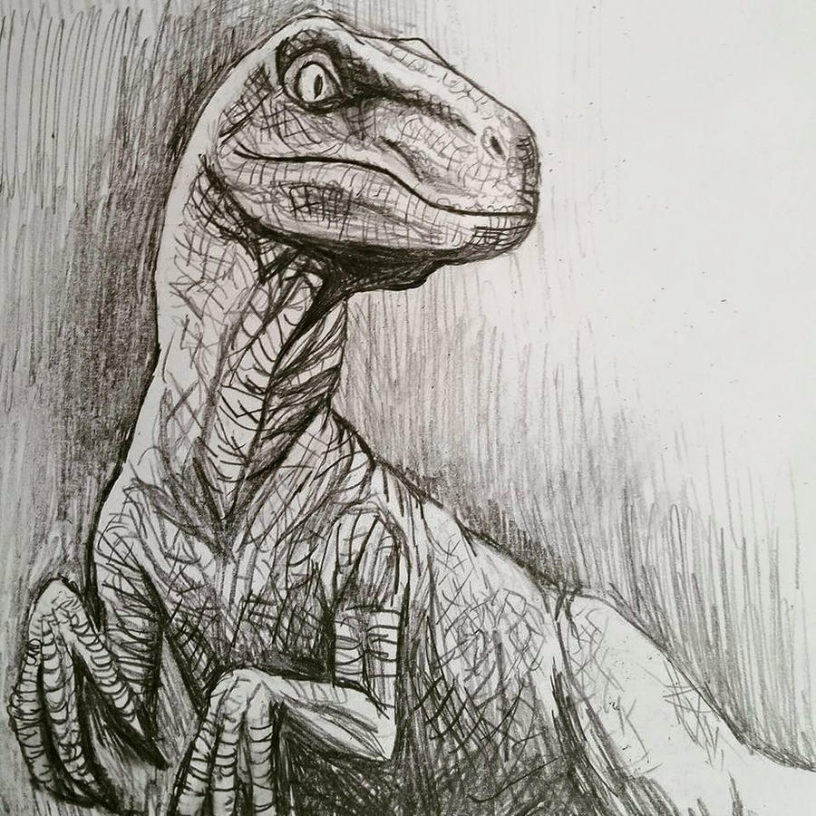 Jurassic World Velociraptor By Jezarae On DeviantArt