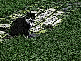 Summer Cat Woodcut by TrackHopper