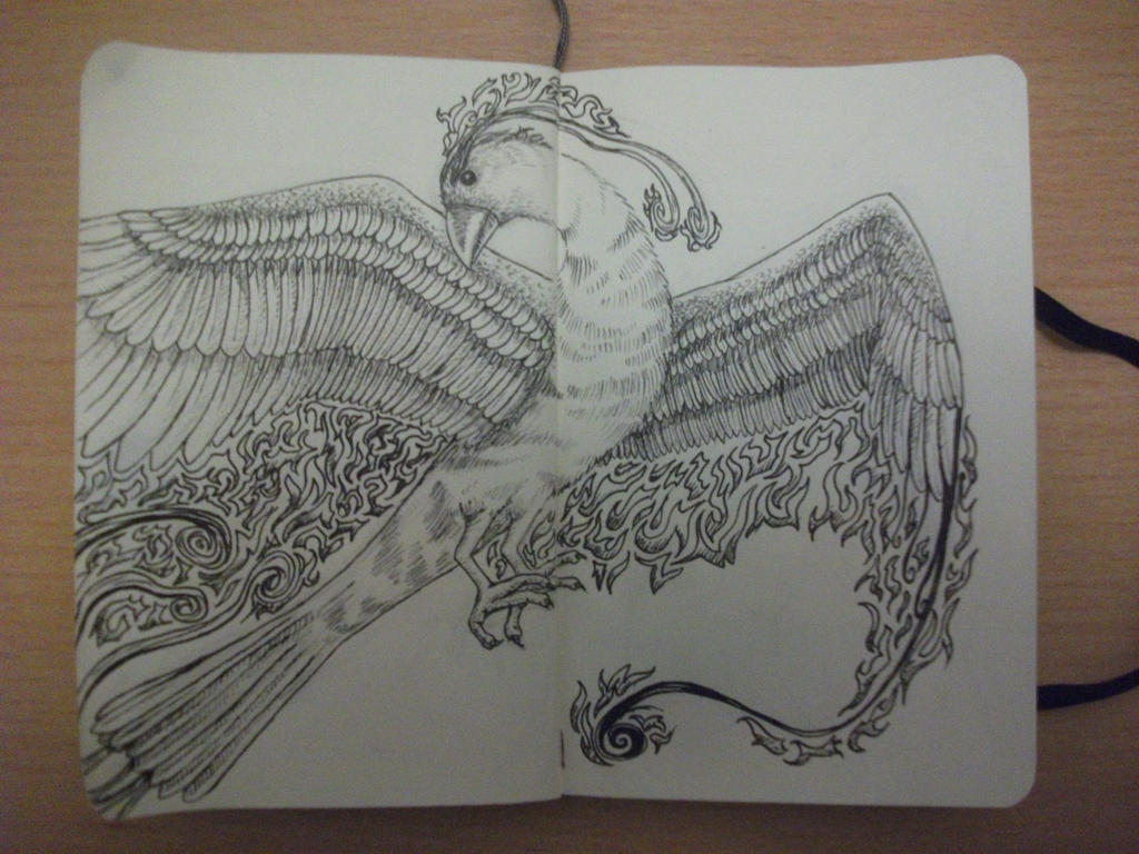 The Line Art Challenge Sketches For Days : Days of doodles challenge day phoenix by patij on