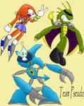 'Sonic Heroes Team Contest'