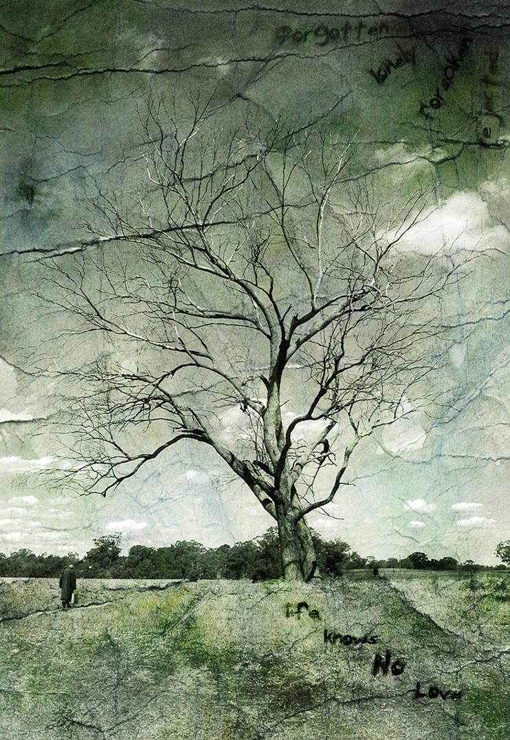 Forgotten Life by AlviNem