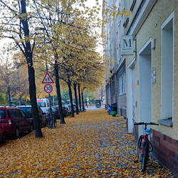 Autumn in Berlin 2015 - III by adorell