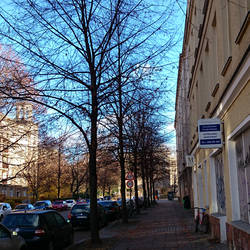 Autumn in Berlin 2015 - III - 8 days later by adorell