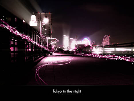 Toyko in the night 01