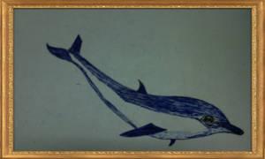 A Dolphin by omariftekhar