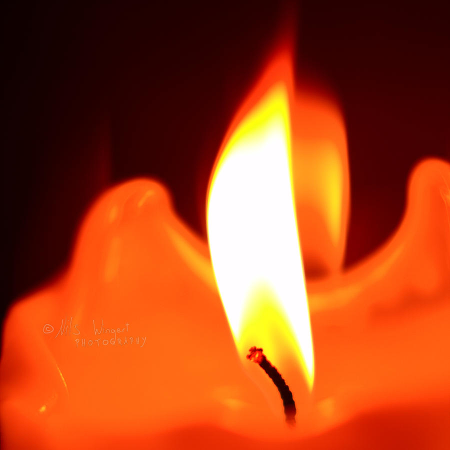 warming fire by Nils-Wingert