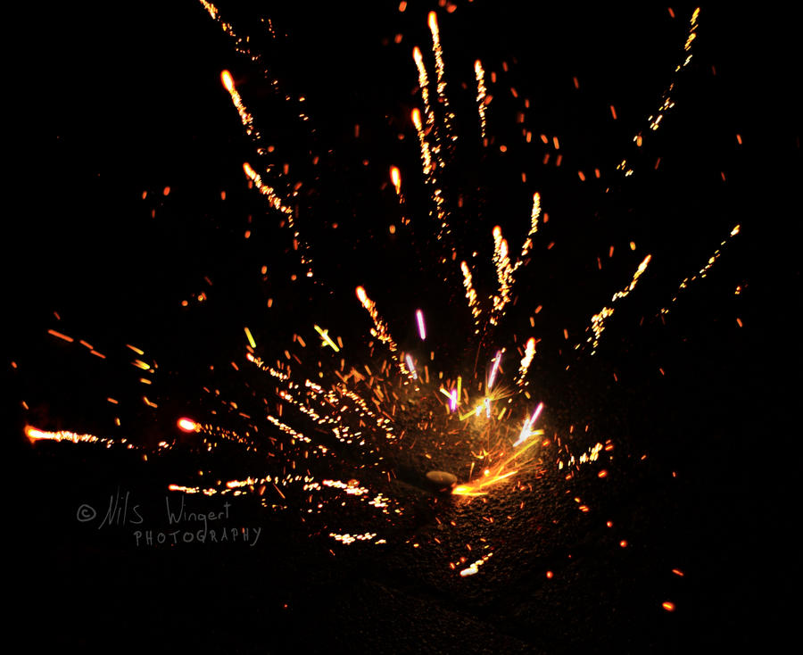 Happy New Year by Nils-Wingert