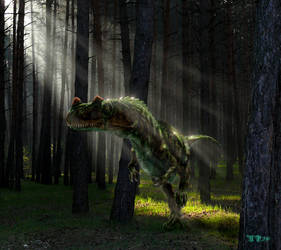 Ceratosaurus nasicornis by Plioart
