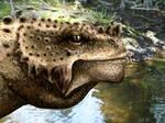 Scutosaurus tuberculatus