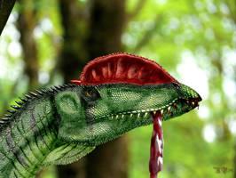 Dilophosaurus wetherilli by Plioart