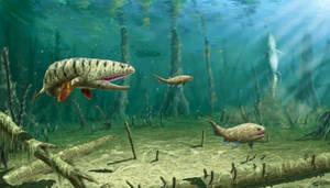 Eusthenodon sp.