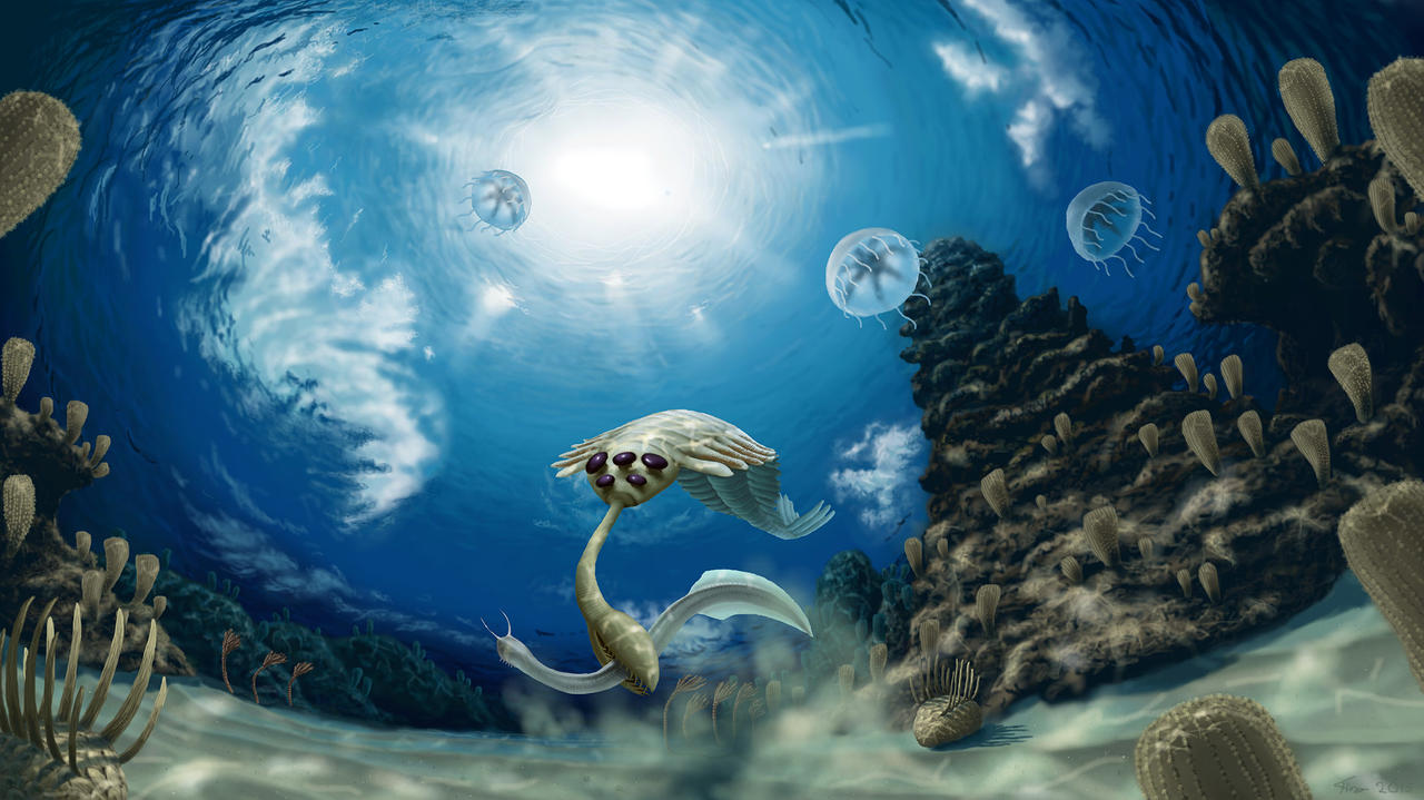 The Cambrian explosion. by Plioart