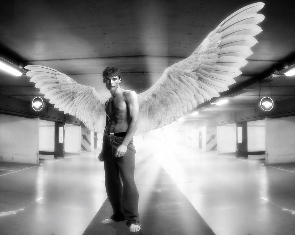angel gay group