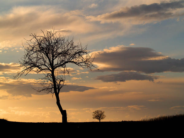 Soul sky by alkioni