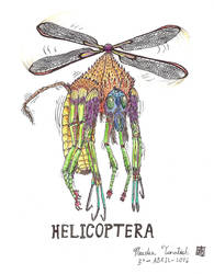 Helicoptera by Weird-eye
