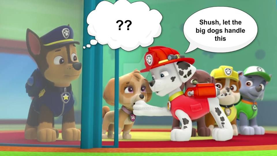 Chase Paw Patrol Pregnant Related Keywords & Suggestions - Chase Paw