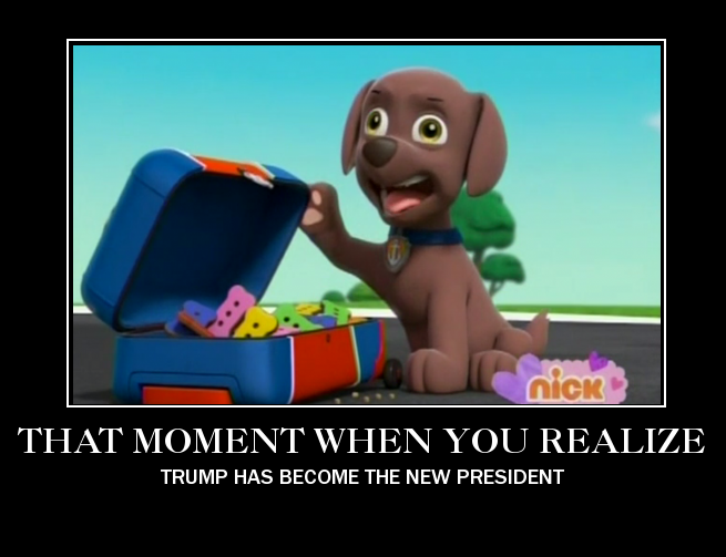 The new president - PAW Patrol meme by mollymolata on DeviantArt