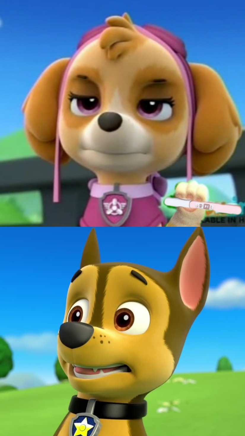 Most Design Ideas Paw Patrol Memes Pictures, And Inspiration