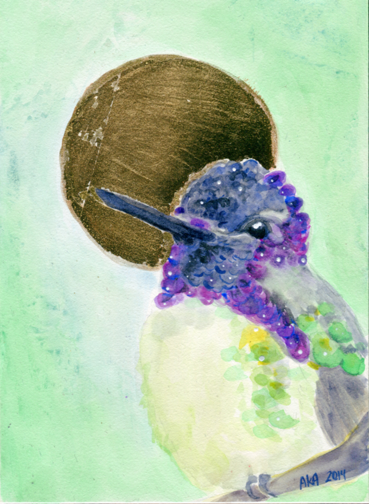Costas Hummingbird by alice-time