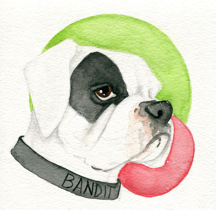 Bandit by alice-time