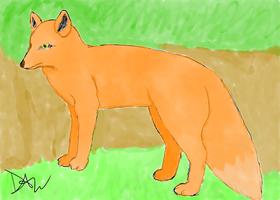 Fox colour by Yoyodan