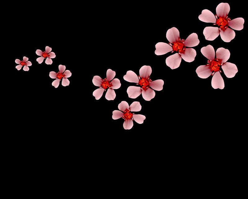 Sakura Wallpaper by dunwich7 on DeviantArt