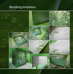 Another wedding invitation