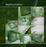 Another wedding invitation