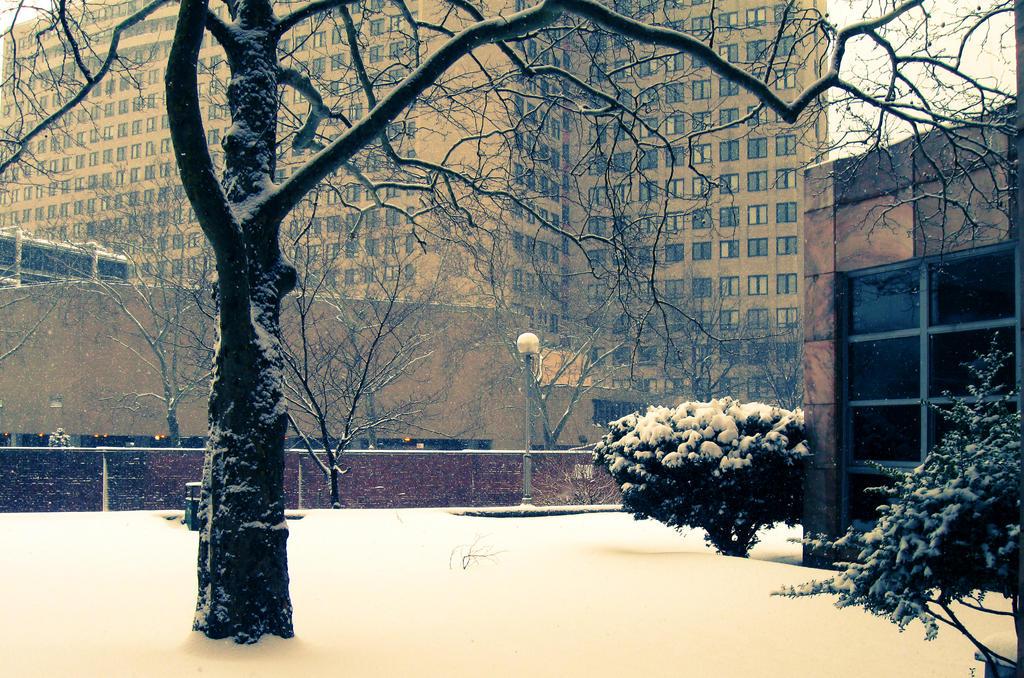 Winter blues by kit-y