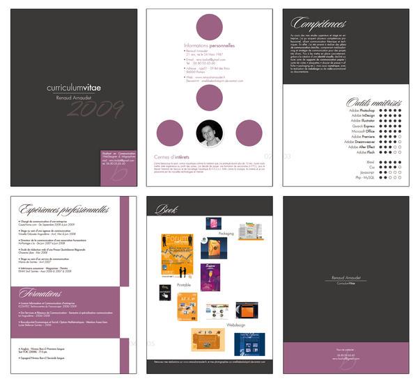Curriculum Vitae 2009 - Renaud by SmellikeBaikalSpirit