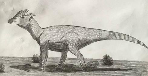 Donburisaurus balochiensis