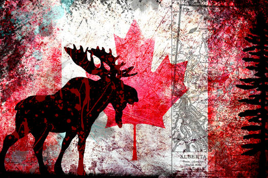 Wild Rose Moose