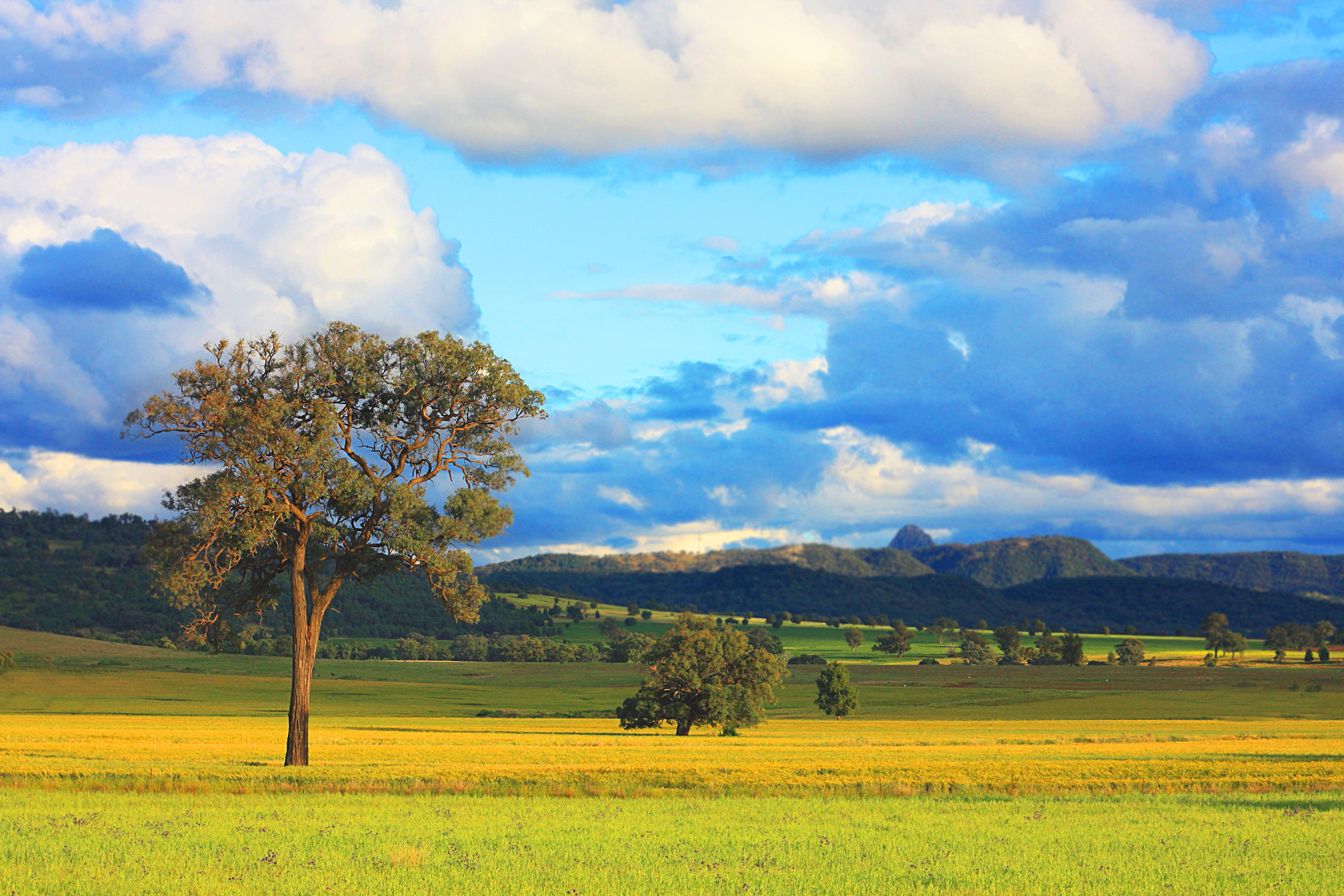 Rural australia dating