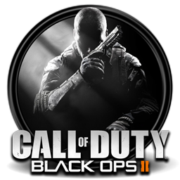 Call of Duty: Black Ops 2 - steam key.